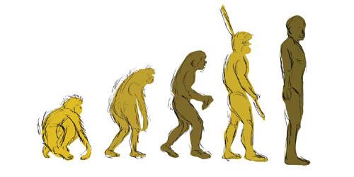 evoluzione_small